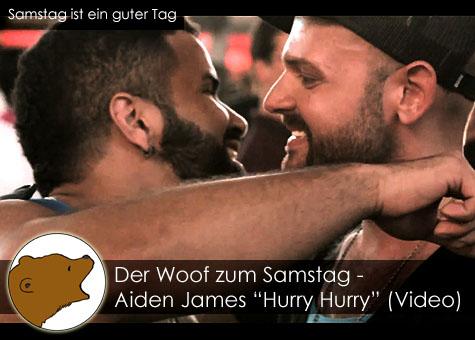 DerWoofzumSamstag_AidenJames-HurryHurry