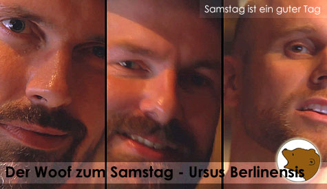 DerWoofzumSamstag_Ursus-Berlinensis